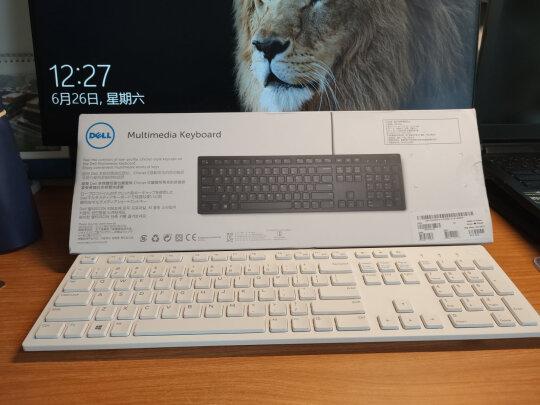 戴尔KB216键盘(白色)对比雷柏X221T哪个更好?做工哪个好?哪个灵敏度佳