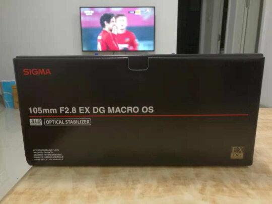 适马105mm F2.8 EX DG OS HSM MACRO好不好,清晰度够高吗?色彩饱满吗