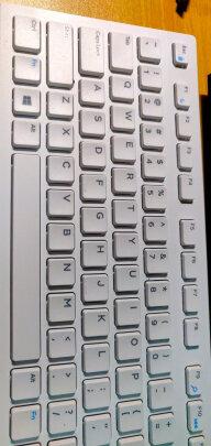 戴尔KB216键盘(白色)对比雷柏X221T哪个更好?哪个做工更加好,哪个灵敏度佳