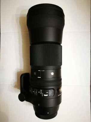 适马150-600mm F5-6.3 DG OS HSM到底怎么样?清晰度高吗?做工精细吗
