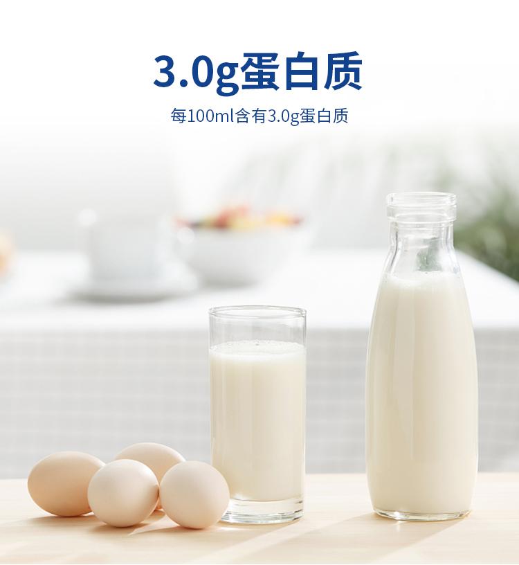 卓牧(jomilk)全脂高钙纯羊奶   不添加牛奶 精选奶源 儿童成人早餐奶200ml*16盒装