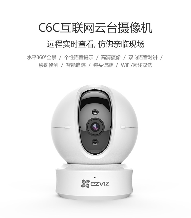 C6C-JD_01.jpg