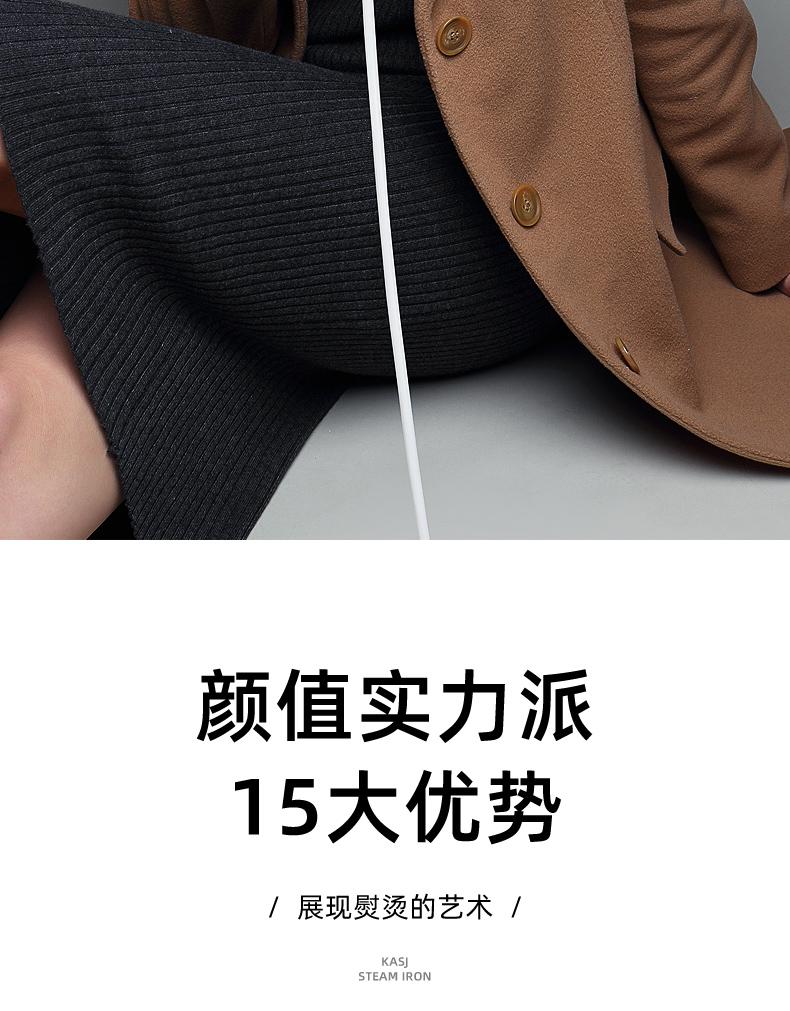 德国KASJ手持挂烫机家用商用蒸汽电熨斗小型挂式熨烫机便携式烫斗熨衣服烫衣机白色