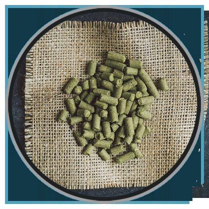 酿酒狗(Brewdog)英国 原装进口 精酿狗黑心牛奶世涛啤酒 330ml*6瓶-京东