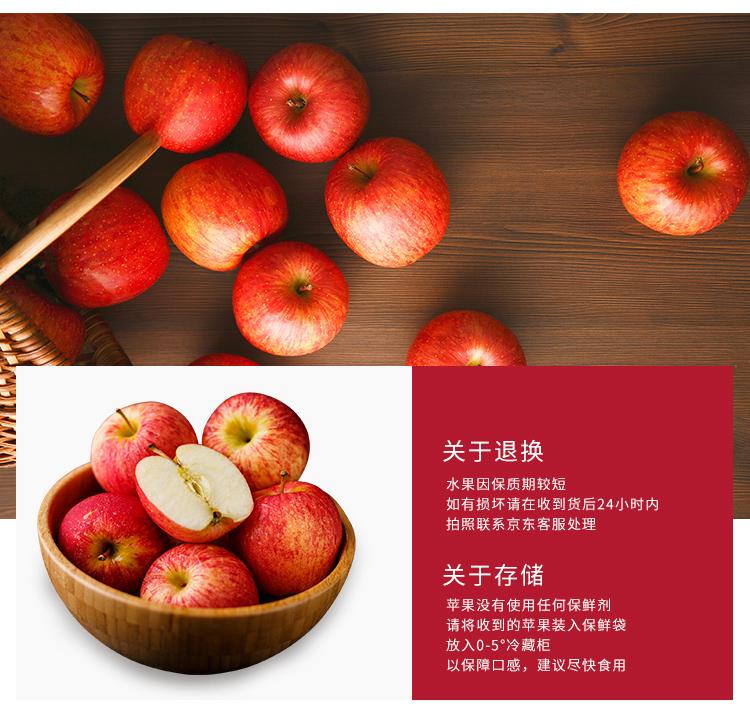 陕北高原红富士苹果