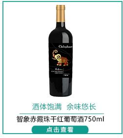 智利进口红酒 智象赤霞珠干红葡萄酒750ml-京东