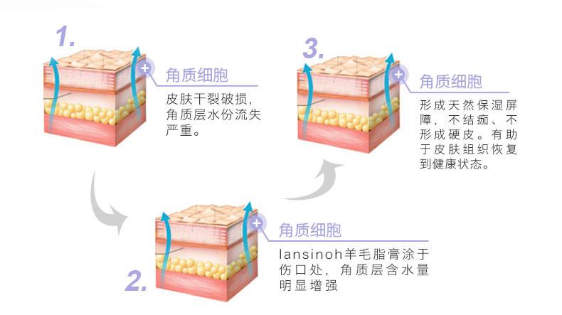 兰思诺 Lansinoh 羊毛脂膏乳头霜 乳头皲裂保护霜40g哺乳修复