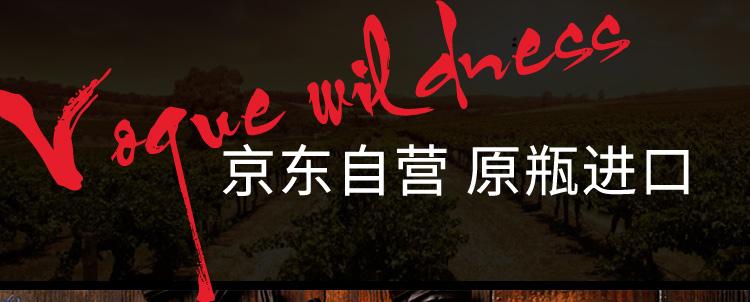 澳大利亚进口红酒 神秘海道(The Hidden Sea)设拉子干红葡萄酒 750ml-京东