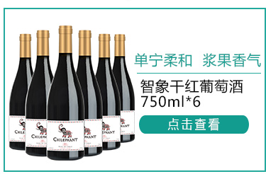 智利进口红酒 智象干红葡萄酒750ml*6瓶 整箱装-京东