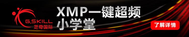 芝奇(G.Skill) Ripjaws 4系列 DDR4 2400频率 8G 台式机内存 (宾利黑)-京东