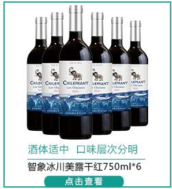 智利进口红酒 智象冰川美露干红葡萄酒750ml*6瓶 整箱装-京东