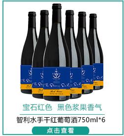 智利进口红酒 智利水手干红葡萄酒750ml*6-京东
