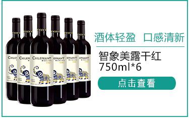 智利进口红酒 智象美露干红葡萄酒 750ml*6瓶-京东
