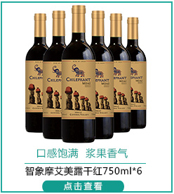 智利进口红酒 智象摩艾美露干红葡萄酒750ml*6瓶 整箱装-京东