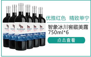 智利进口红酒 智象冰川窖藏美露干红葡萄酒750ml*6瓶 整...-京东