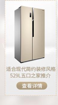 容声(Ronshen) 456升 十字对开门多门冰箱 双变频 一级能效 负离子杀菌 独立变温 钛空金 BCD-456WD11FP-京东