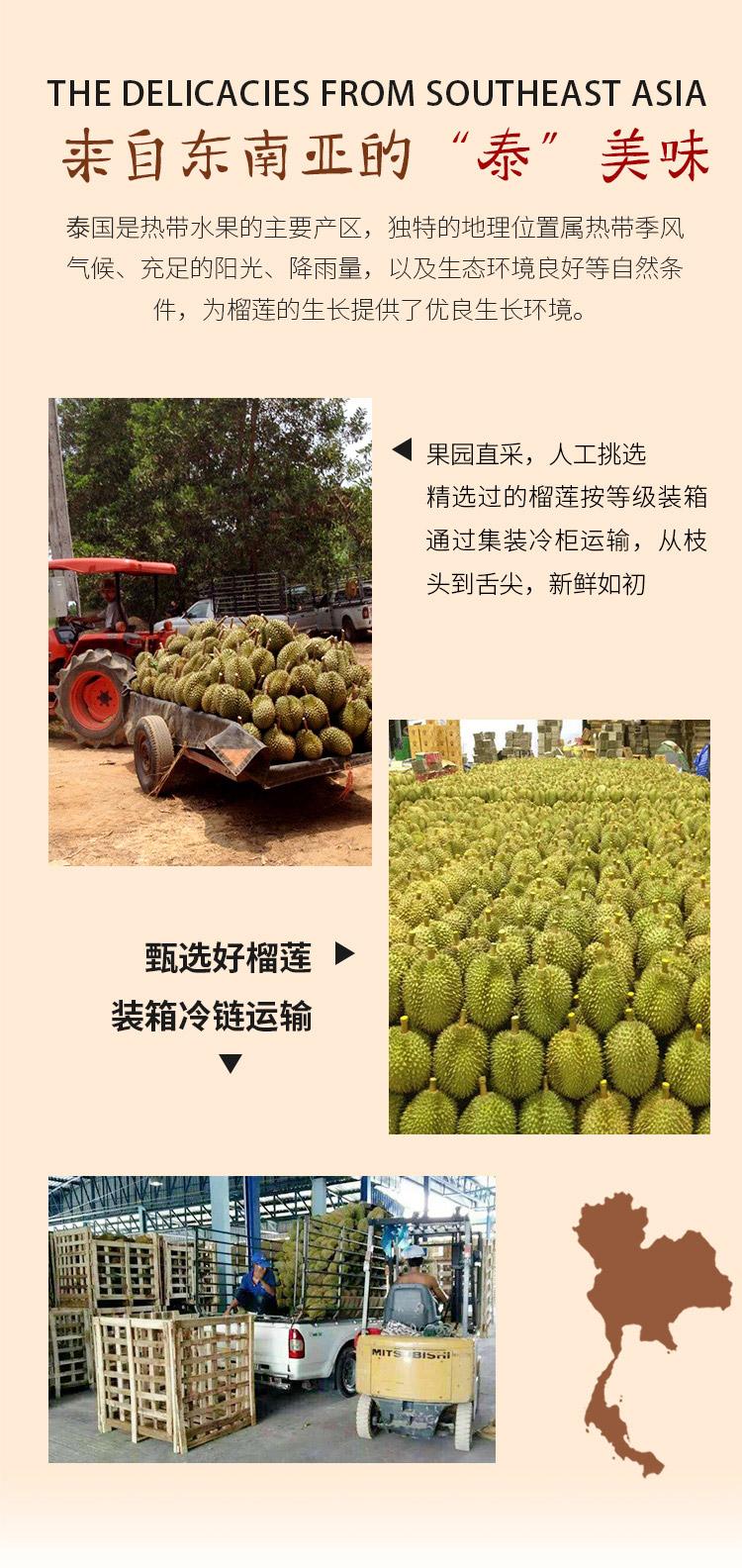 限京东PLUS会员 京觅 泰国金枕榴莲 7kg以上(2-4只) 图9