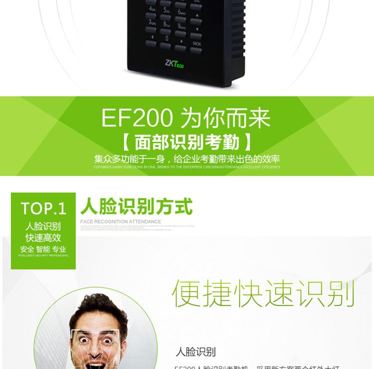 EF200_04.jpg