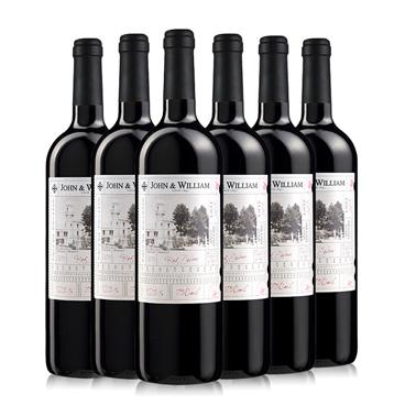 西班牙进口红酒 宜兰树 约翰威廉干红葡萄酒750ml*6瓶 ...-京东