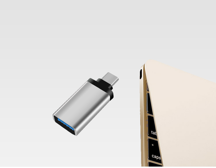 Napier NAIPOER N-Z1 Type-C to USB3.0 adapter / phone OTG line silver - Jingdong