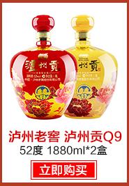 【京东超市】泸州老窖 泸州贡Q9 52度 1880ml*2盒 红瓶+黄瓶【整箱装】-京东